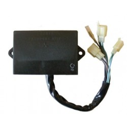 Centralita electronica Suzuki DR 650 RE (94/95) / DR 650 RSE (91/93)