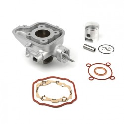 Cilindro de aluminio AIRSAL 49.2cc Ludix agua (02025440)