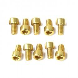 Kit tornillos allen cabeza cilíndrica Pro-Bolt M6 x 10mm (10 pack) Aluminio oro LPB610-10G