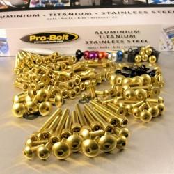 Caja de tornilleria mixta Pro-Bolt 200 piezas Aluminio oro (Taller) WSBOX200G