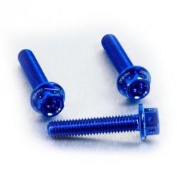 Kit tornillería aluminio Race Spec motor Pro-Bolt EOHO76HXRBE Azul