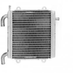 Radiador Adapt Yamaha Aerox / Nitro ( Oem : 5Bre24600100 )